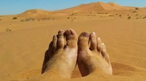 algérie,désert,migrants